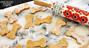 Make Your Own Easy & Healthy Homemade Doggie Treats