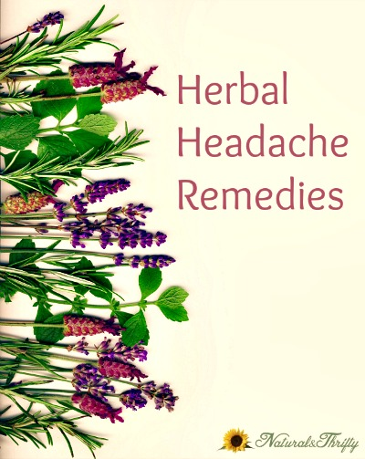 10 Natural Herbal Headache Remedies