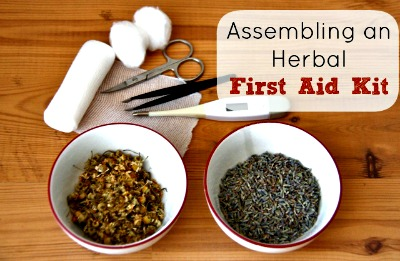 Herbal First Aid – Assembling a Kit