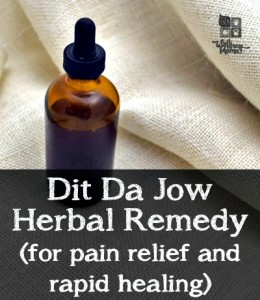 How to Make Dit Da Jow – an Herbal Remedy for Pain