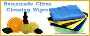 How to Make Citrus Scented Homemade Cleaning Wipes