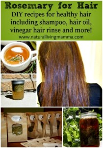 best rosemary hair care recipes