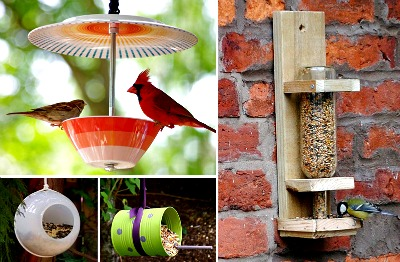 10 Creative DIY Bird Feeders