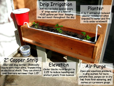 How to Make a Passive Gravity Irrigated Planter (Self-Watering Planter)