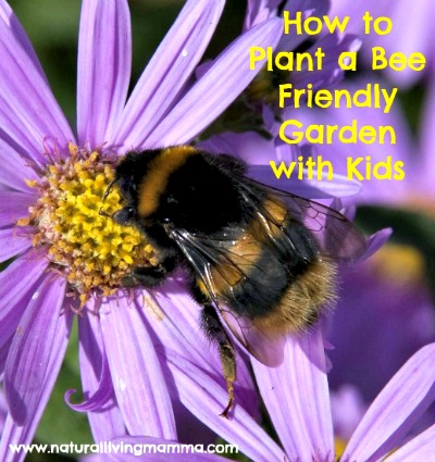 How to Plant a Bee Friendly Garden with Your Kids