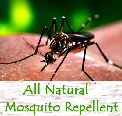 All Natural Essential Oil Mosquito Repellent Recipe