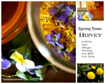 Homemade Spring Tonic Honey Recipe