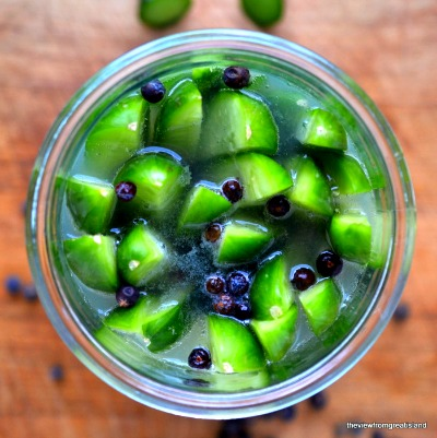 How to Make Gin and Tonic Refrigerator Pickles
