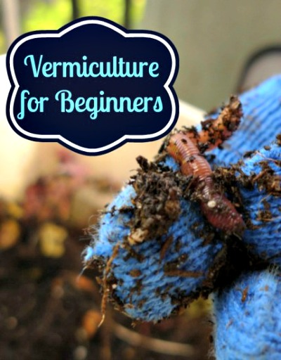 Introduction to  Vermiculture - Using Worms For Composting