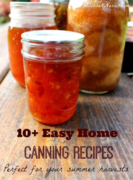 10+ Easy Home Canning Recipes