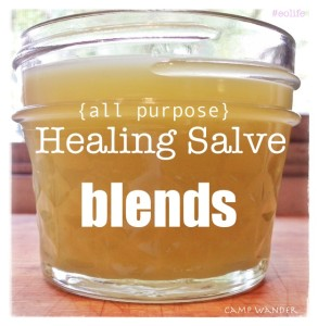3 NEW All~Purpose Healing Salve Blends with Essential Oils