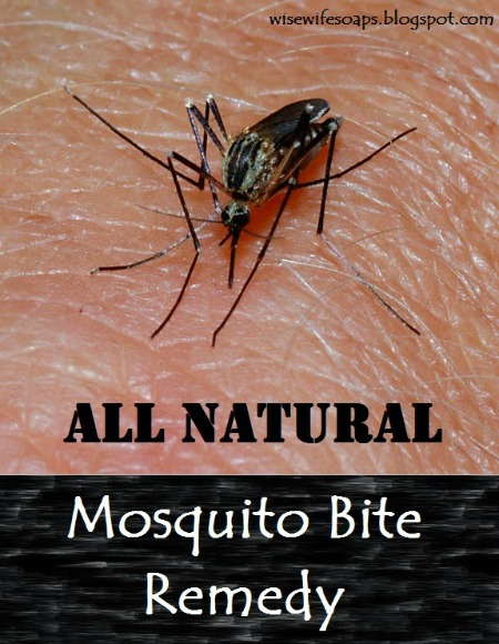 How to Make All-Natural Mosquito Bite Remedy