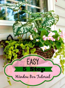 Easy 5-Step Window Box Tutorial