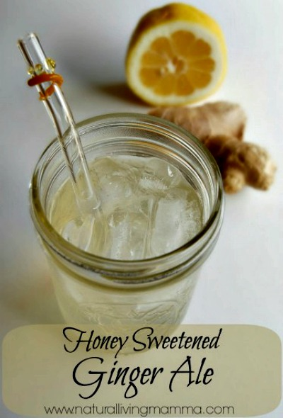 Homemade Honey Sweetened Ginger Ale Recipe
