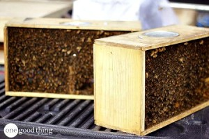 How to Become A Backyard Beekeeper
