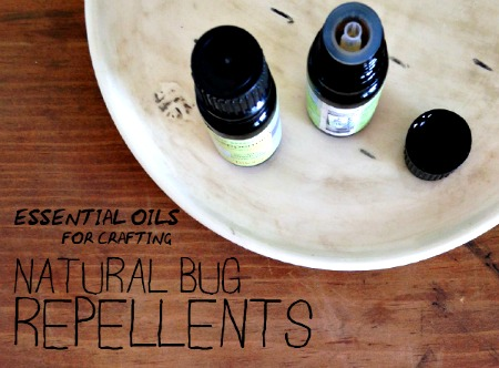How to Make a Natural Bug Repellent Using Essential Oils