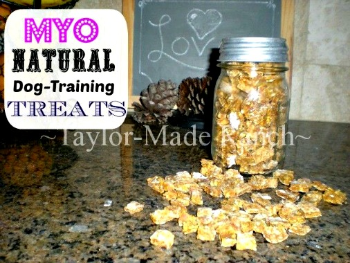 How to Make Your Own Healthy Dog Training Treats