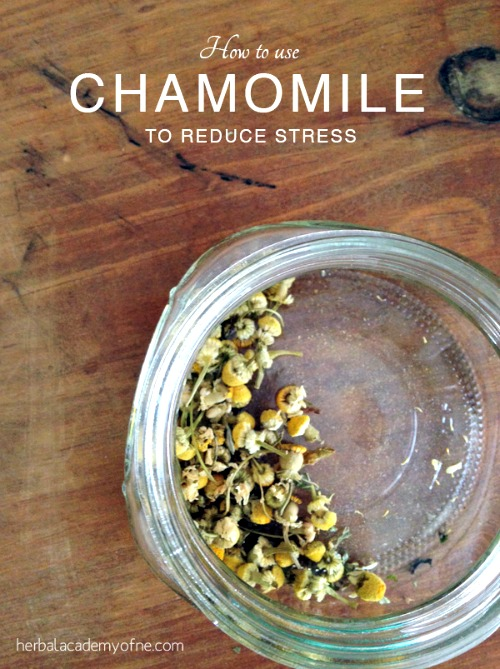 How to Use Chamomile to Reduce Stress