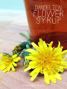 Sweeten Your Breakfast With Dandelion Flower Syrup