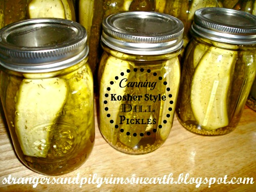 How to Can Kosher Style Dill Pickles ~ A Tutorial