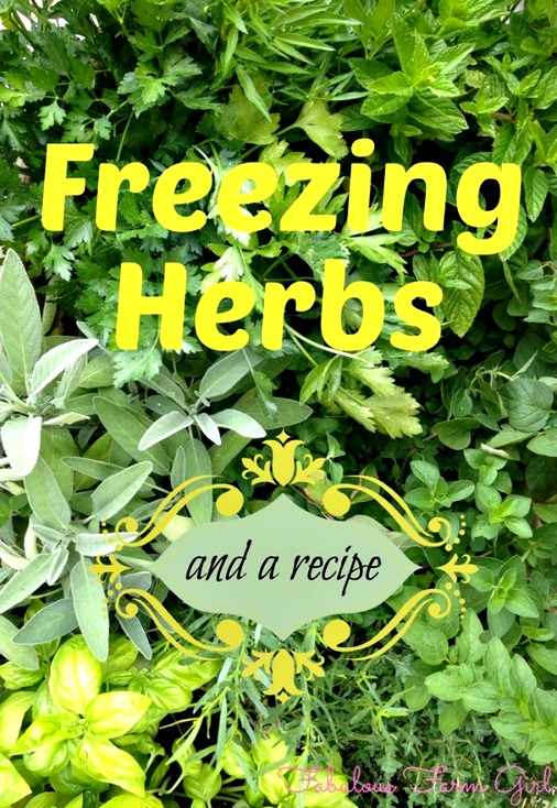 How to Freeze Herbs (+ a Recipe)
