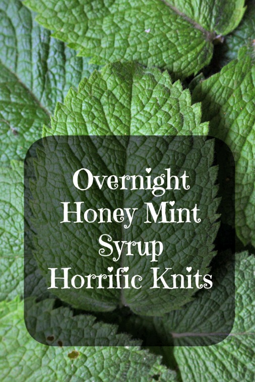 How to Make Overnight Honey Mint Syrup