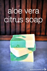 How to Make Aloe Vera Citrus Soap