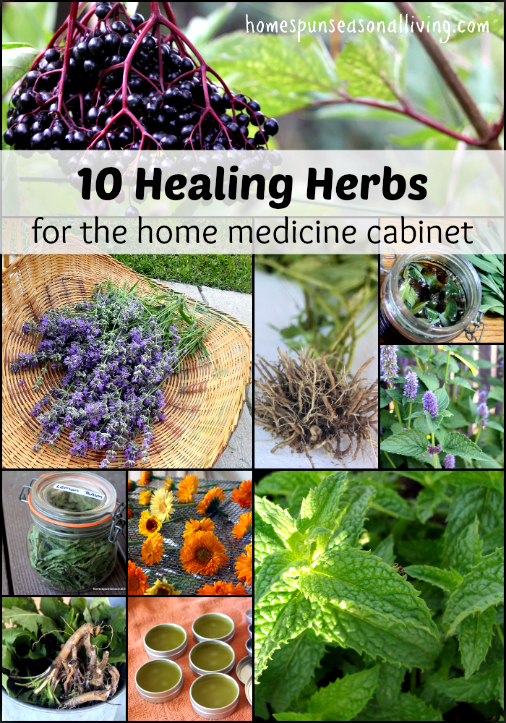 10 Healing Herbs with Recipes