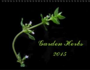 2015 Garden Herbs Wall Calendar