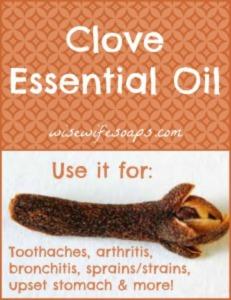 Essential Oil Spotlight – Clove Essential Oil