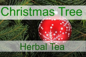 How to Make Healing Herbal Remedies with Your Christmas Tree