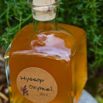 How to Make Hyssop Oxymel to Fight Colds, Flu and Bronchitis