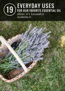 19 Everyday Uses for Our Favorite Essential Oil - Lavender!