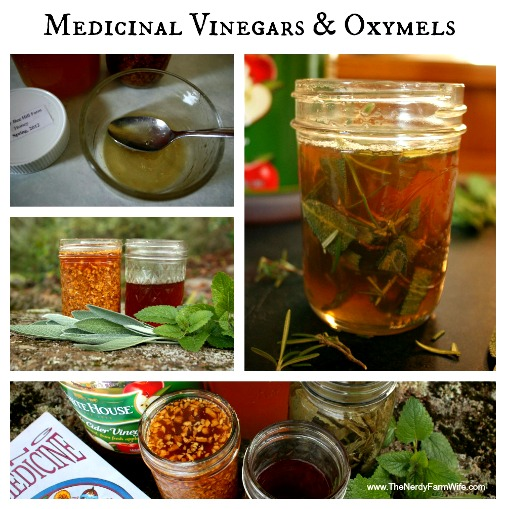 How to Make Medicinal Vinegars and Oxymels