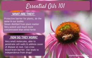 Go Green and Get Clean with Essential Oils