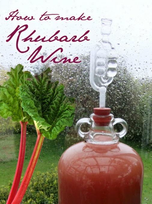 How to Make Rhubarb Wine