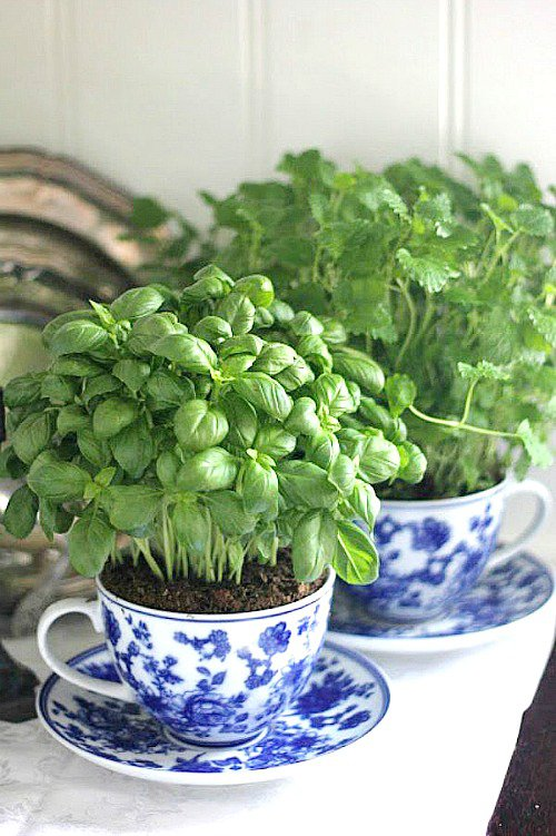18 Brilliant and Creative DIY Herb Gardens