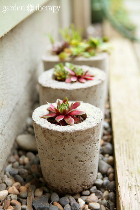 How to Make Concrete Planters, concrete flower planters