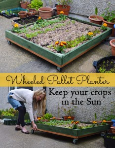 How to Make a Wheeled Garden Pallet Planter