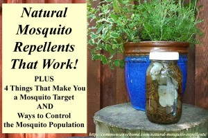 Natural Mosquito Repellents That Work