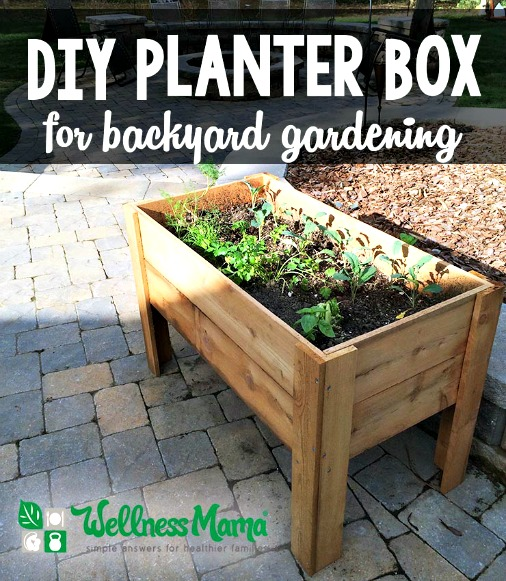 DIY Planter Box for Backyard Gardening