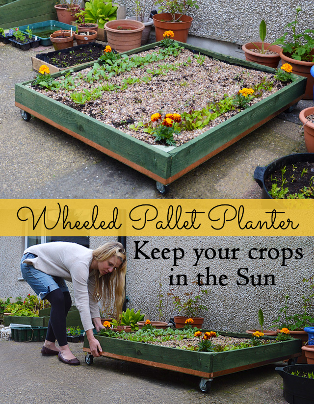 How to Make a Wheeled Pallet Planter