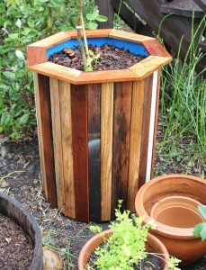 Stylish and Affordable DIY 55 Gallon Drum Garden Planters