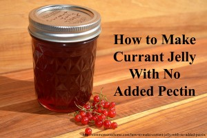 How to Make Currant Jelly with No Added Pectin