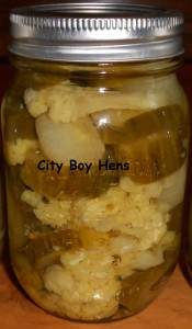 The Best Homemade Pickle Recipes by City Boy Hens