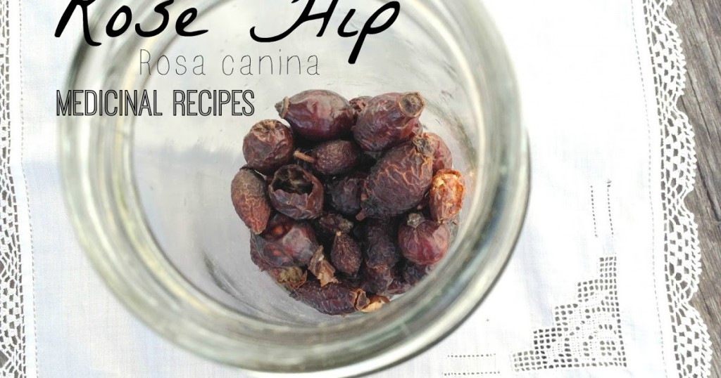 Rose Hip Medical Recipes