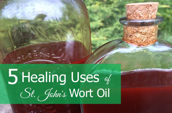 Healing Uses for St John's Wort