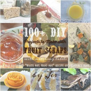 100+ DIY Projects to Make with Fruit Scraps (EBook)