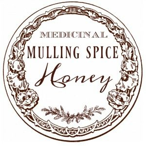 scrap-medicinal-mulling-spice-honey